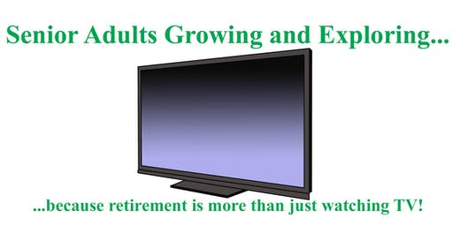 Retirement Pleasures & Pitfalls: A Discussion & Social Event for Seniors 35