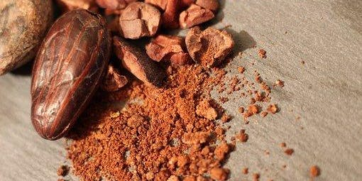 Solstice Cacao Ceremony in Nature