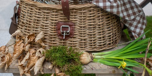 Simply in Season: The Picnic Basket