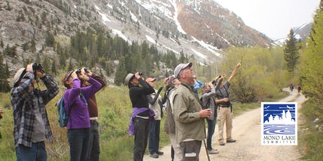 Lundy Canyon Bird Walk tickets