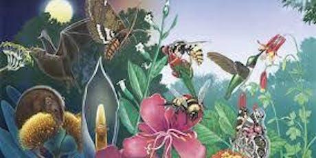 Second Annual Pollinator Celebration Day tickets