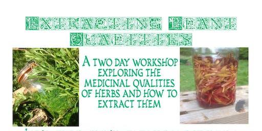 Extracting Plant Qualities