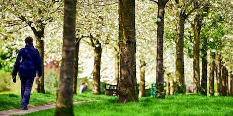 Marche sensorielle en nature, pleine conscience des sens billets