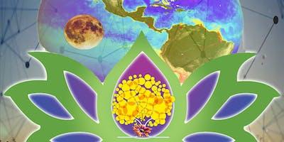 EARTHDANCE BRASILIA - COLLETIVE INTELLIGENCE