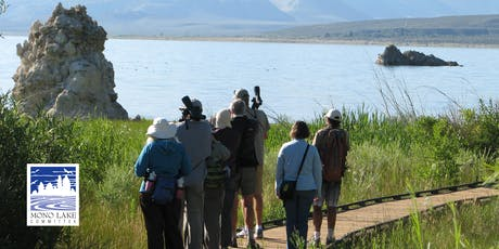 Mono Lake County Park Bird Walk tickets