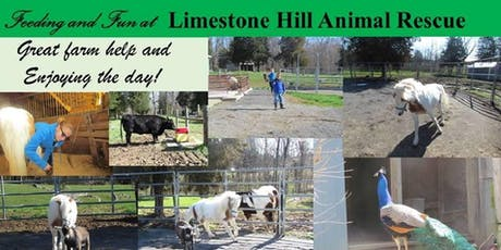Fun at the Farm Fundraiser and Open House tickets