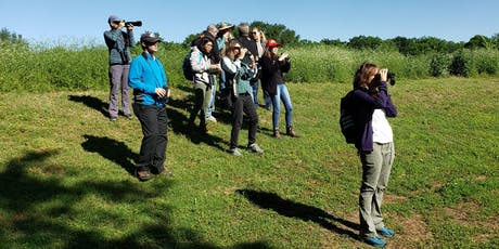 Headwaters 3rd Friday Birding: With Lora Reynolds tickets