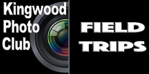 Glenwood Cemetery Field Trip