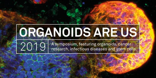 Organoids Are Us Symposium