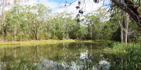 Bush Explorers: Bushtucker walk - Noorumba Reserve tickets