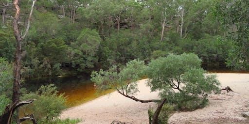 Bush Explorers: Habitats of Campbelltown - Simmos Creek Reserve