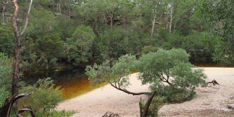 Bush Explorers: Bushtucker walk - Simmos Beach Reserve tickets