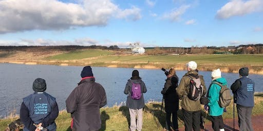 St Aidan's Wellbeing Walks