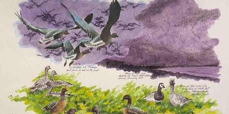 Sketching Masterclass Wildlife and Landscapes at RSPB Titchwell Marsh tickets