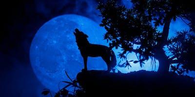 Wild Moon Rising