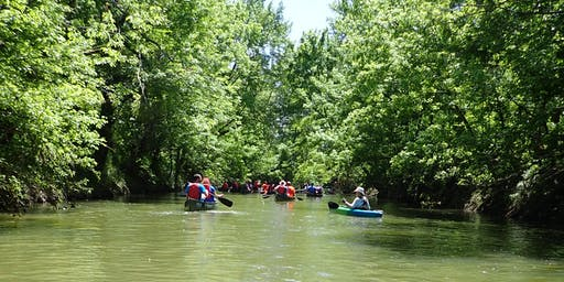 Canoes & Conversation:  Urban Stream Adventure