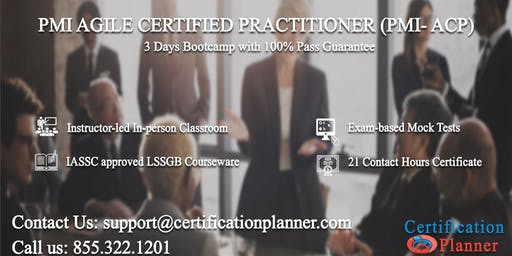 PMI Agile Certified Practitioner (PMI-ACP) 3 Days Classroom in San Jose