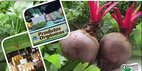 Atuando na Agricultura Orgânica: Mercados e Certificações -10/08/2019 ingressos