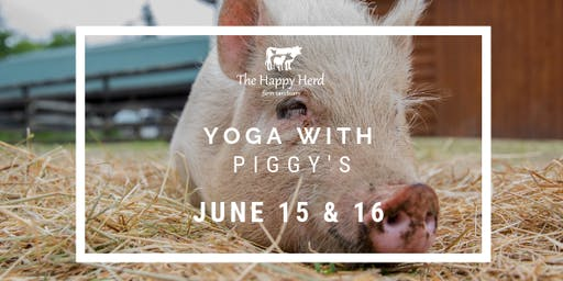 Yoga with Piggy's.  SOLD OUT!!
