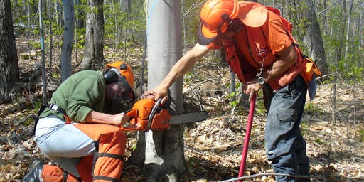 LEVEL 1 of Game of Logging Chainsaw Training, SEPTEMBER 26 (Thursday), 2019