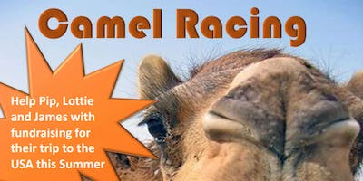 Curry and Camel Racing