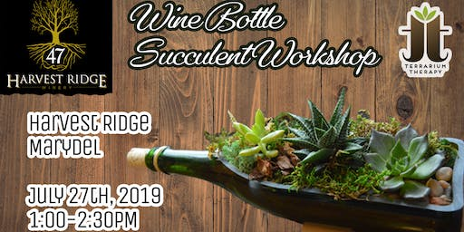 Wine Bottle Succulent Workshop at Harvest Ridge Winery - Marydel