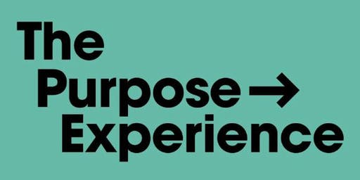The Purpose Experience