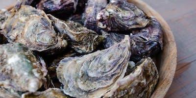 Деликатесы Cеверного моря. Дегустации и море
