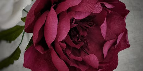 Crepe Paper Peony Workshop tickets