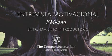 Entrevista Motivacional, EM-uno Entrenamiento Introductorio  entradas