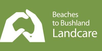 Bonogin Valley Bushcare Group