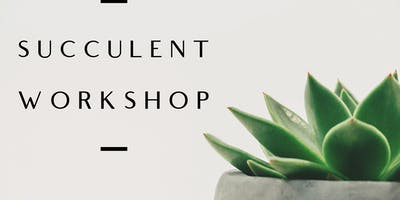 Succulent Workshop in DFW