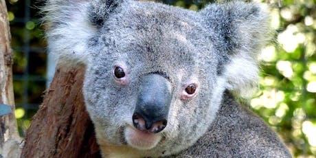 Cleland Wildlife Park Trip tickets