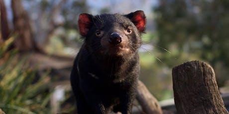 Bonorong Wildlife Rescue Training - LAUNCESTON - 14 July 2019 tickets