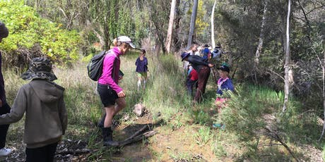 Exploring Bugle Tree Gully tickets