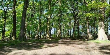 Tree Trail tickets