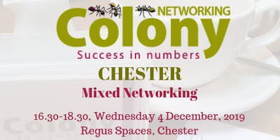 Colony Networking (Chester)