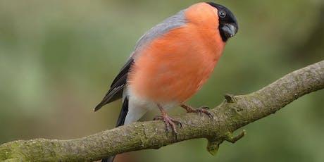 Bird Walk on the Foss Islands Greenway tickets