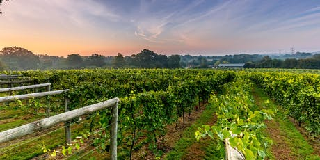 Chestnut Tree House Networking Breakfast - Bolney Wine Estate, West Sussex tickets