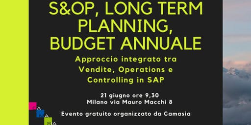 S&OP, Long Term Planning, Budget annuale