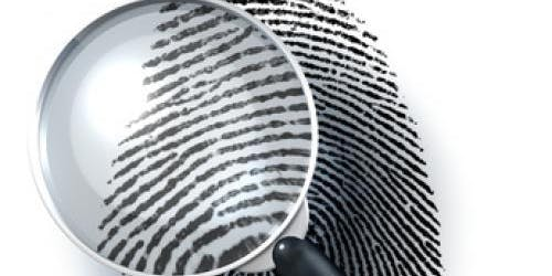 Being a Detective: What's Your Verdict?