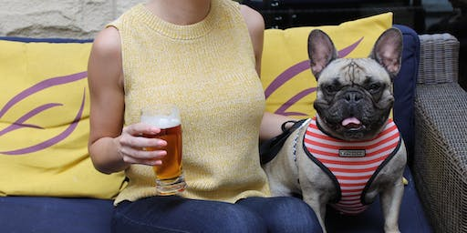 Dogs & Drafts at the Kimpton Marlowe Hotel