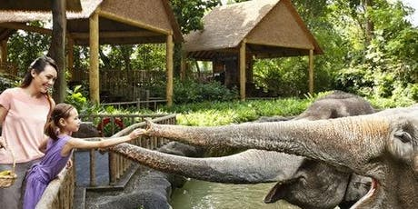 Singapore Zoo with Tram Ride tickets