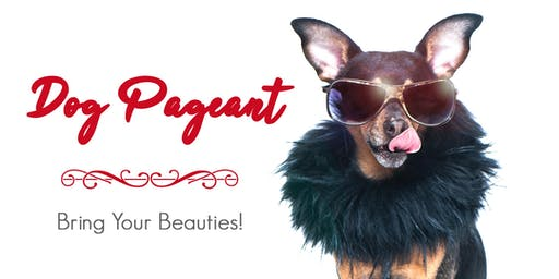 MULLYS 1st Annual DOG PAGEANT