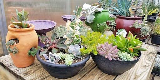 Succulent Container Class