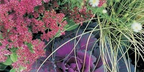 Autumn & Winter Hanging Baskets and Containers tickets