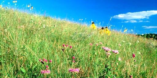 Grassland & Pollinator Habitat Tour
