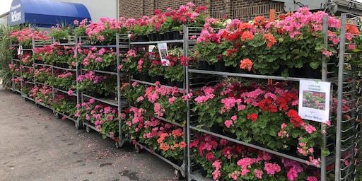 15th Annual Habitat Flower Sale