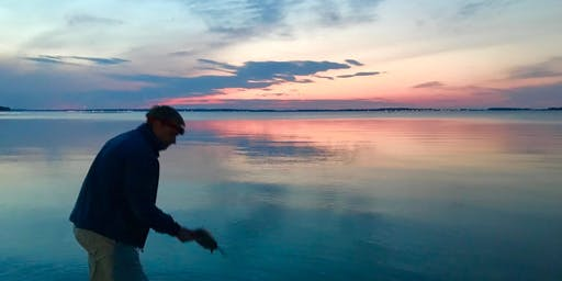 Horseshoe Crab Survey Season Wrap-up BBQ