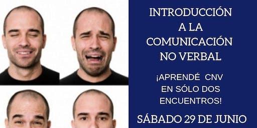 Comunicación No Verbal ¡Curso Introductorio en Mendoza!